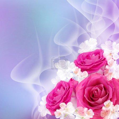 Photo pour Roses roses - image libre de droit