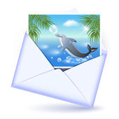 Open envelope and card with image dolphin