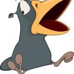 Grey raven with opened, big beak...