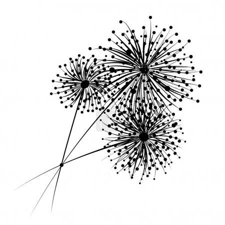 Dandelion flowers for your design