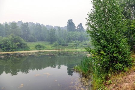 Fog above forest lake