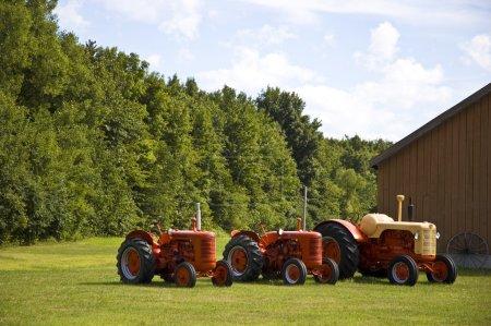 Row of Vintage Tractors