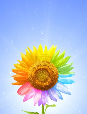 Photo for Petals of a sunflower painted in different colors - Royalty Free Image