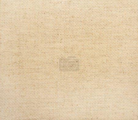 texture de la toile