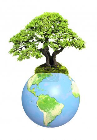 Photo for Earth and tree. Isolated on white background. Elements of this image furnished by NASA - Royalty Free Image