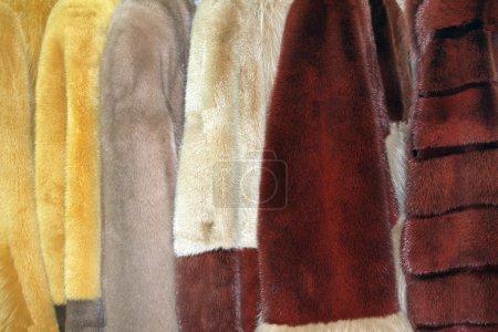 Photo pour Rangée de nombreux manteaux de fourrure de différentes couleurs - image libre de droit