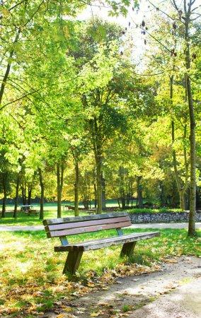 Photo pour Banc dans le parc à l'automne - image libre de droit