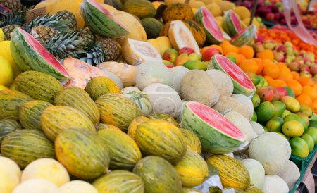 Delicious melons and watermelons on a market