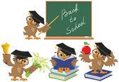 Set Owl teacher Back to School Vector cartoon