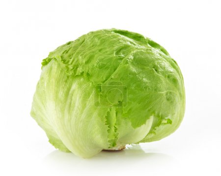 Photo for Green Iceberg lettuce on White Background - Royalty Free Image