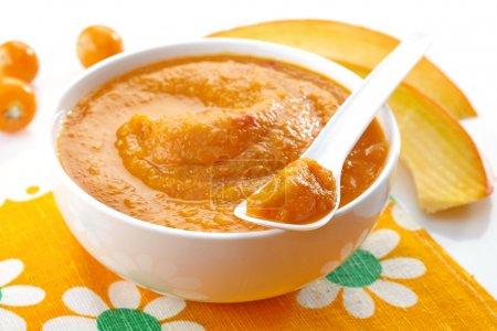 Baby food. Fresh, organic pureed vegetables