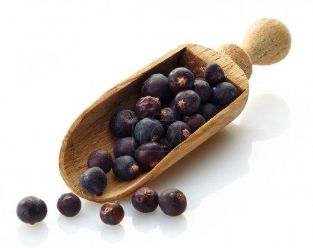 Wooden scoop with dried juniper berries...