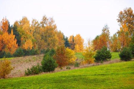 Photo pour Paysage d'automne avec des arbres colorés - image libre de droit