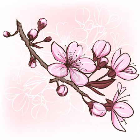 Illustration for Cherry blossom. Decorative floral illustration of sakura flowers - Royalty Free Image