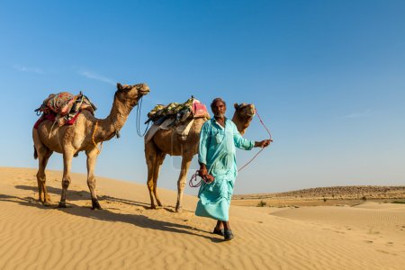 Cameleer (camel driver) with camels in dunes of Thar desert. Raj