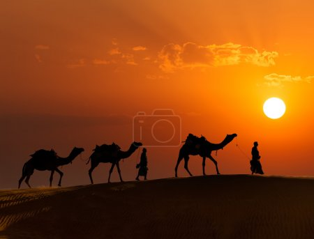 Photo pour Rajasthan fond de voyage - deux chameliers indiens (conducteurs de chameaux) avec des silhouettes de chameaux dans les dunes du désert de Thar au coucher du soleil. Jaisalmer, Rajasthan, Inde - image libre de droit