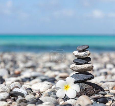 Photo pour Pile de pierres équilibrée zen avec fleur de plumeria bouchent sur la plage de la mer - image libre de droit