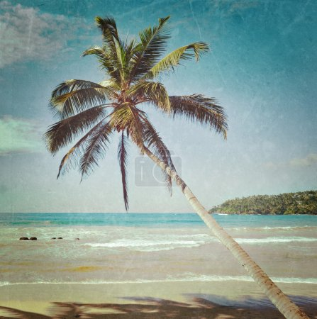 Photo for Vintage retro hipster style travel image of tropical paradise idyllic beach with palm with grunge texture overlaid. Sri Lanka - Royalty Free Image