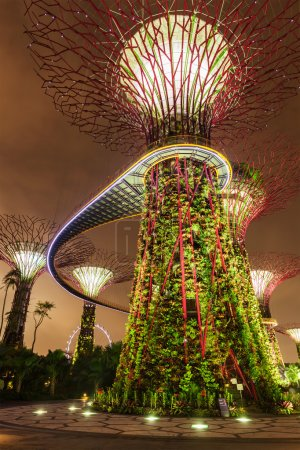 Garden by the Bay futuristic part night view, Singapore