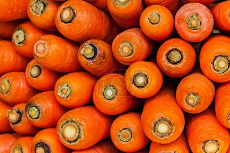 Photo for Carrots close up at vegetable market - Royalty Free Image