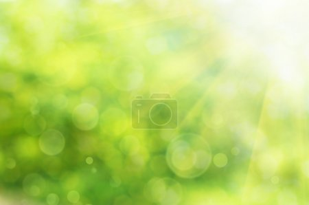 Photo for Natural outdoors bokeh in green and yellow tones with sun rays - Royalty Free Image