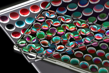 Multicolour eyeshadows palette
