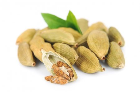 Cardamom pods with leaves isolated on white backgr...