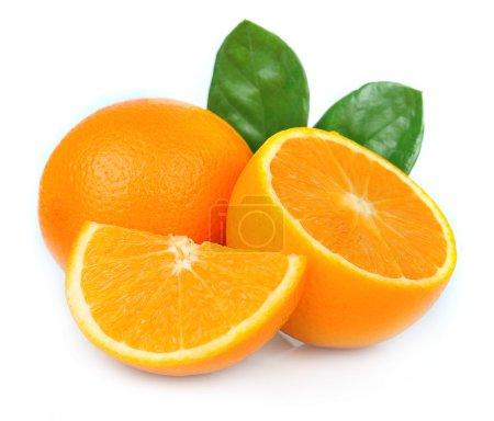 Photo for Sweet orange fruit with leaves on white - Royalty Free Image