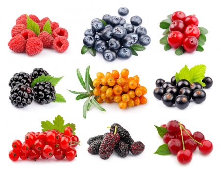 Photo for Set of berry on white close up - Royalty Free Image