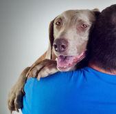 chien et l'homme