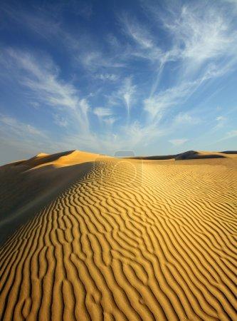 evening desert
