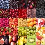 Постер, плакат: Berries