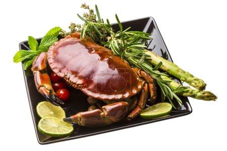 Photo pour Gros crabe bouilli - image libre de droit