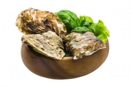 Photo for Fresh oyster - Royalty Free Image