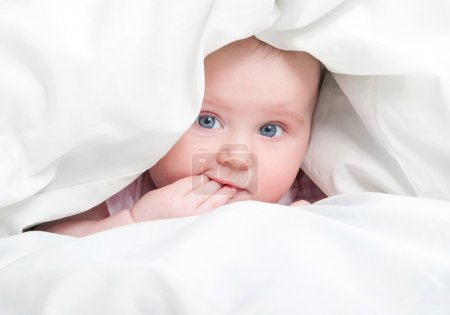 cute baby under a blanket
