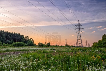 High voltage power line in flower meadow