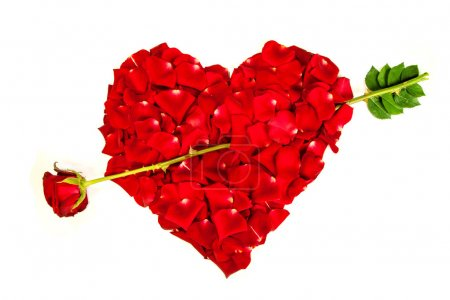 Heart shape made out of rose