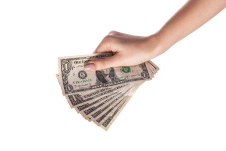 Female hand holding money dollars isolated on white background