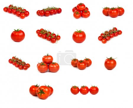 set of tomatoes isolated