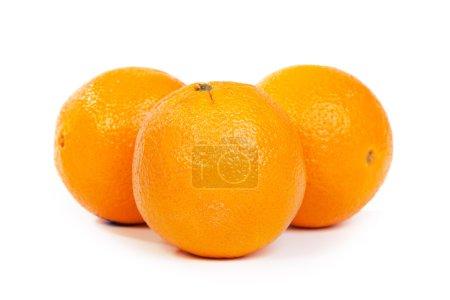 Photo pour Oranges fraîches sur fond blanc - image libre de droit