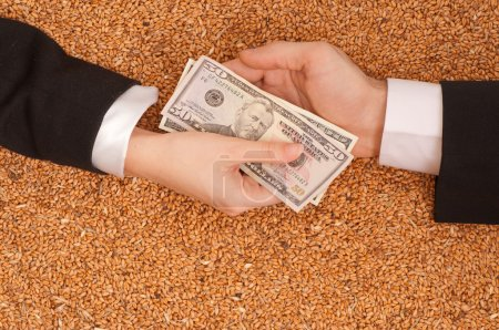 Photo for The businessman pays delivery of wheat by dollars - Royalty Free Image