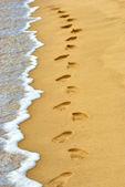 Human footprints on sand at the beach