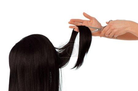 Photo pour Salon de coiffure coupe jeune femme aux longs cheveux noirs - image libre de droit