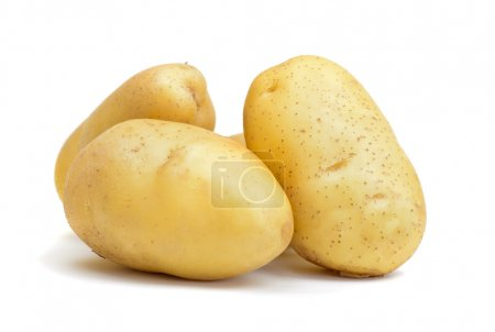Photo for Pile of fresh raw potato isolated over white - Royalty Free Image