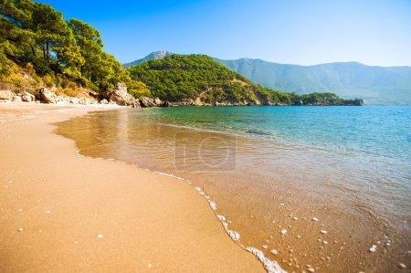 Sandy beach sea