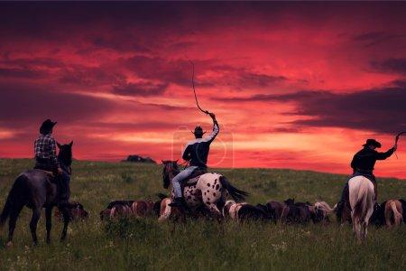 Three cowboys over sunset