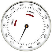 Thermometer used in cooking grill with the equipment Vector illustration