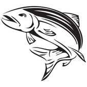 Salmon rivers symbol of Alaska Vector illustration