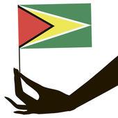 Hand with flag Guyana