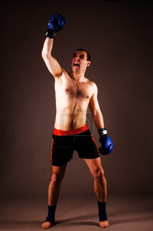 Photo for Mma fighter with hands up on gray background - Royalty Free Image